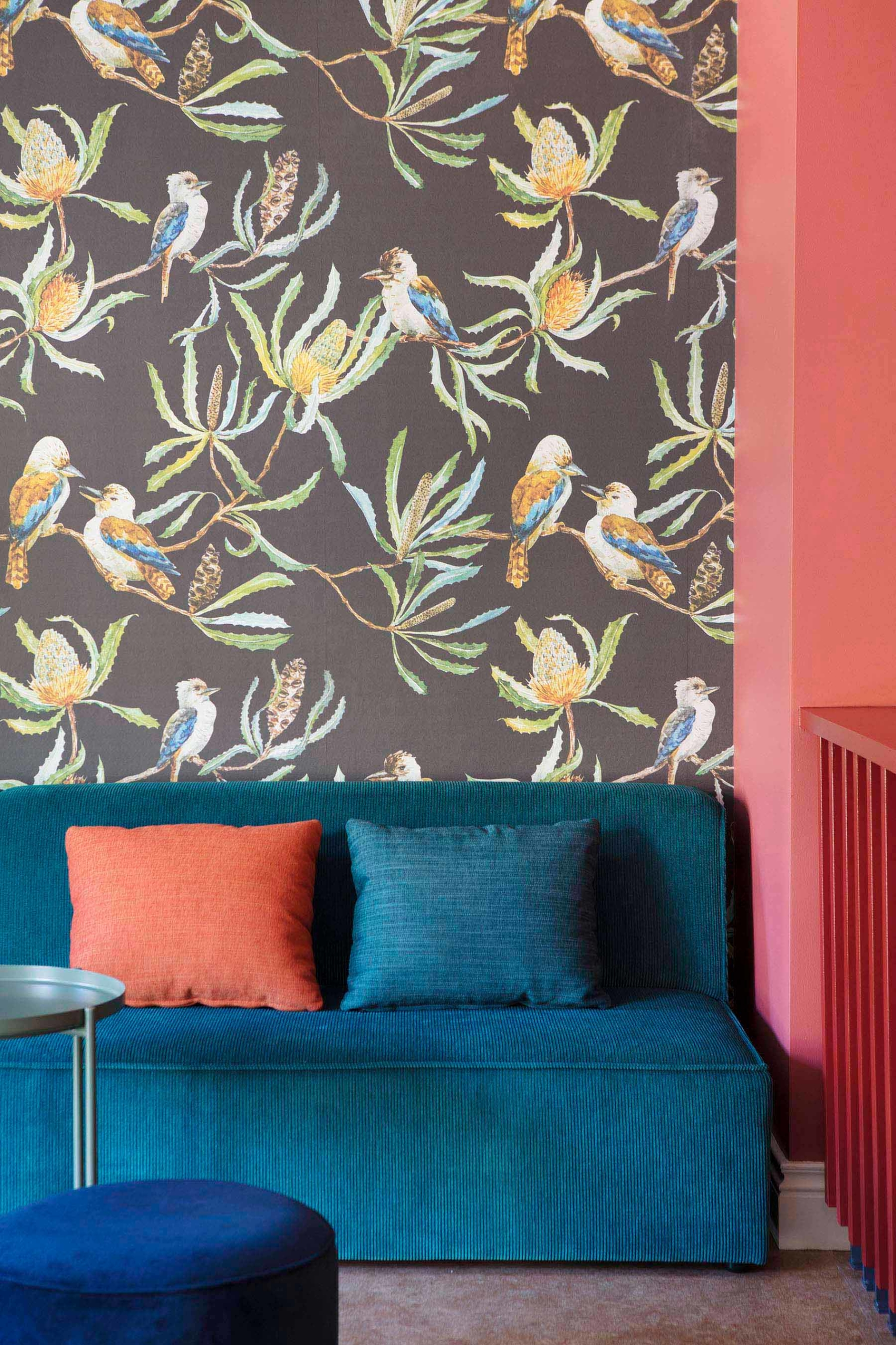 blue couch in front of coloured wallpaper depicting banksias and kookaburras